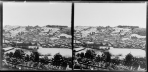 Snow covered valley and houses [Dunedin?], Otago Region