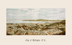 Potts, William 1859-1947 :City of Wellington, N.Z. W. Potts, lith; A.D. Willis, lithographer, Wanganui, N.Z.; Wrigglesworth & Binns, photo. Wanganui, A.D. Willis [1889].