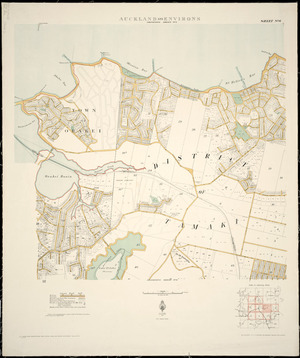 Auckland and environs [cartographic material].