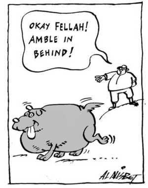 Nisbet, Alistair, 1958- :'Okay Fellah! Amble in behind!' Christchurch Press. 8 August, 2002.