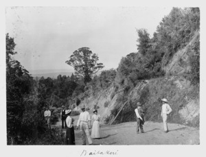 Group on a road in the Waitakere region