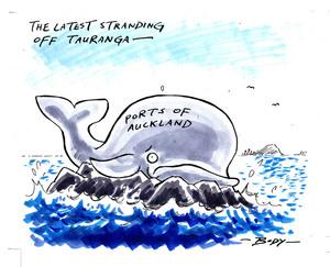 Body, Guy Keverne, 1967- :The latest stranding off Tauranga... 7 December 2011