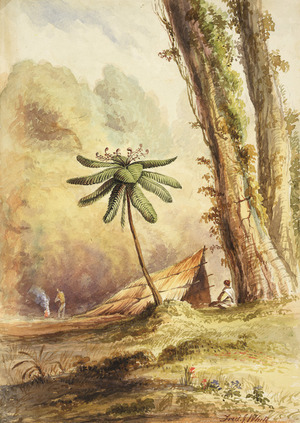 White, Frederick John, fl 1837-1848 :[Black fern-tree, New Zealand. Raupo hut, with a Pakeha by a fire, a seated Maori and a tree fern, amidst tall tree trunks. 1848 or 1849?]
