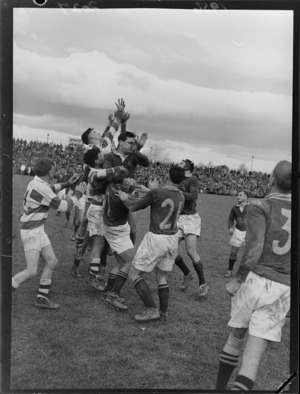 1956 Springbok rugby union football tour, Springboks versus Wairarapa-Bush in Masterton