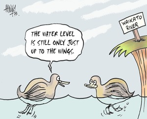 Hawkey, Allan Charles, 1941- :'The water level is still only just up to the wings.' Waikato Times, 11 August 2004.