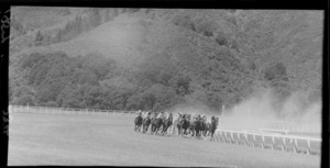Horses heading for the finish line in the Wellington Racing Club Handicap, Trentham, Upper Hutt