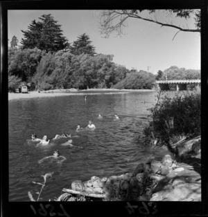 People swimming in a Masterton River