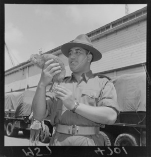 Maori soldier with a stuffed kiwi mascot for the Malayan Emergency force