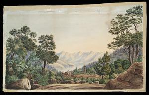 Burchell, P, fl 1874 :Milling kauri, Coromandel. 1874