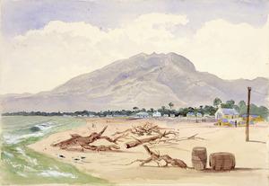 [Fox, William] 1812-1893 :Mt Rochford & Westport. [1872]
