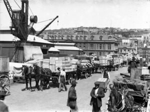 Queen's Wharf, Wellington, showing drays laden with goods