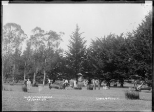 Paritata picnic grounds, Raglan - Photograph taken by Gilmour Brothers