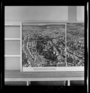 Grafton Gully, Auckland, photograph used in the Changing Auckland Exhibition