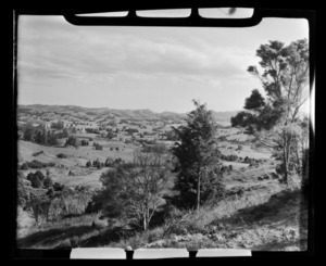 Maromaku Valley rural area, Northland