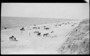 Troops of the ANZAC Mounted Division and their horses on the beach at Marakeb.