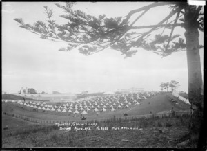 View of the Mounted Special's camp in the Auckland Domain, Auckland