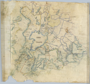 [Creator unknown] :[Maori land blocks in the Taupo District] [ms map]. [n.d.]