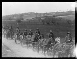Military horse transport, World War I