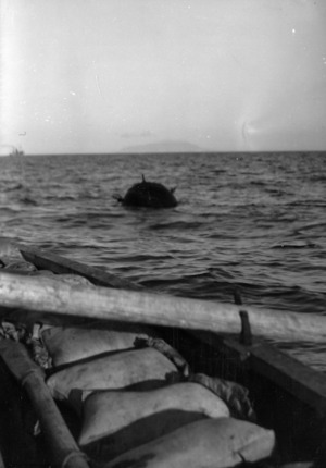 A mine swept up from the Hauraki Gulf, Auckland, after the sinking of the Niagara during World War 2