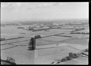 Rural Waikato scene