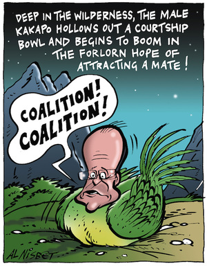 "Deep in the wilderness, the male Kakapo hollows out a courtship bowl and begins to boom in the forlorn hope of attracting a mate! ""COALITION! COALITION!"" 2 September, 2005"