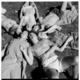 Encounter group at the summer university congress at Curious Cove, Marlborough Sounds, 1971
