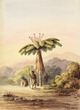 White, Frederick John, fl 1837-1848 :[Tree fern with three Maori at sunset. Hutt Valley? 1848 or 1849?]